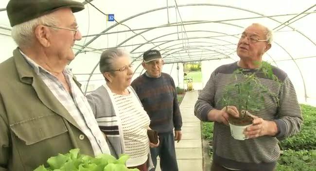 Canal 32 - Des horticulteurs ouvrent leurs portes