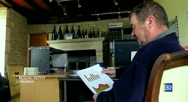 Canal 32 - Francis Wenner : un vigneron pionnier au sein du réseau Dephy