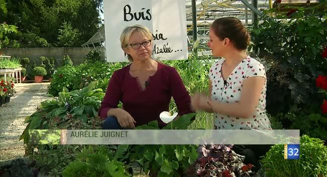 Canal 32 - Le Jardin de Nathalie