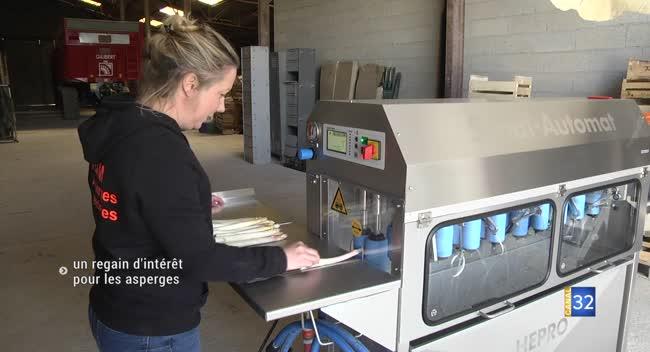 Canal 32 - Assencières : deux agricultrices renouvellent la production de l'asperge
