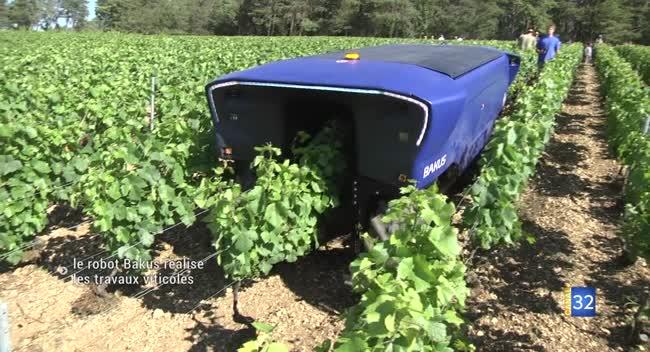 Canal 32 - Les Riceys : Bakus, le robot viticole devient une réalité