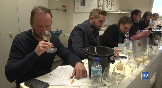 Canal 32 - Bar-sur-Seine : un concours viticole réservé aux champagnes de l'Aube