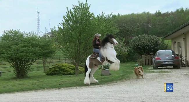 Canal 32 - Envie de sortir : Irish Cobs et équitation western et Juan Berrozpe à la galerie Dumont