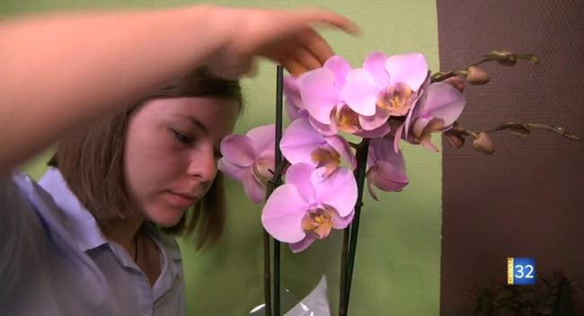 Canal 32 - Aurélie, l'Auboise meilleure apprentie fleuriste de France