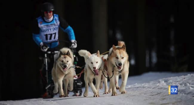 Canal 32 - Grand Format : un Aubois champion de course de chiens de traineau
