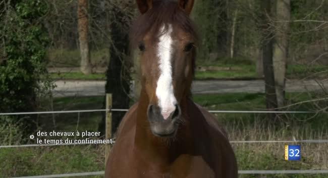 Canal 32 - La Rivière-de-Corps : des chevaux à placer le temps du confinement