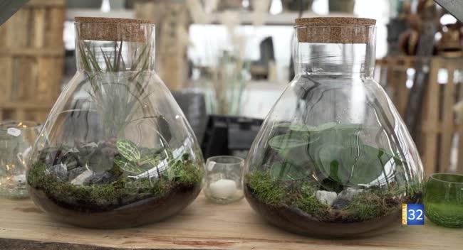 Canal 32 - Le Jardin de Nathalie - les plantes en autosuffisance