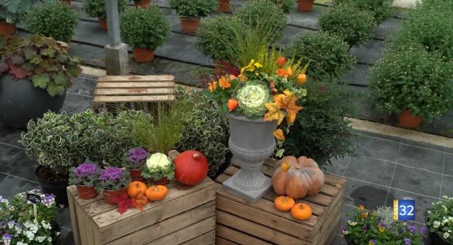 Canal 32 - Le Jardin de Nathalie - faites une décoration d'automne dans votre jardin !