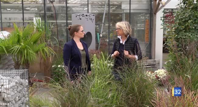 Canal 32 - Le Jardin de Nathalie - Des graminées en pleine terre ou en jardinière !