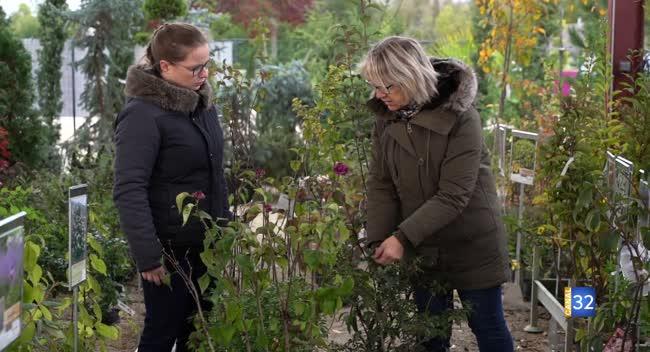 Canal 32 - Le Jardin de Nathalie - faites le plein d'idées pour planter des arbustes !