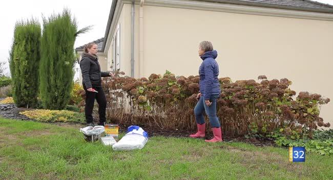 Canal 32 - Le Jardin de Nathalie : il est encore temps de tailler vos hortensias !