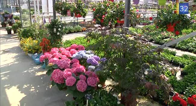 Sp ciale jardins les astuces pour organiser son jardin canal32 - Organiser son jardin ...
