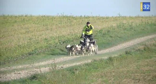 Canal 32 - Les chiens de traineau s'entrainent pour la compétition