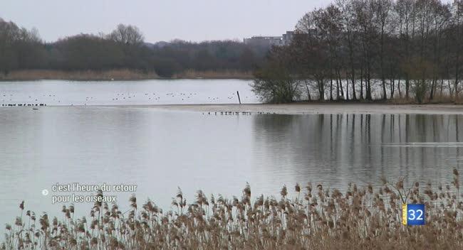 Canal 32 - Les oiseaux en migration prénuputiale passent par l'Aube