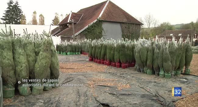 Canal 32 - Bercenay-en-Othe : les ventes de sapins autorisées durant le confinement