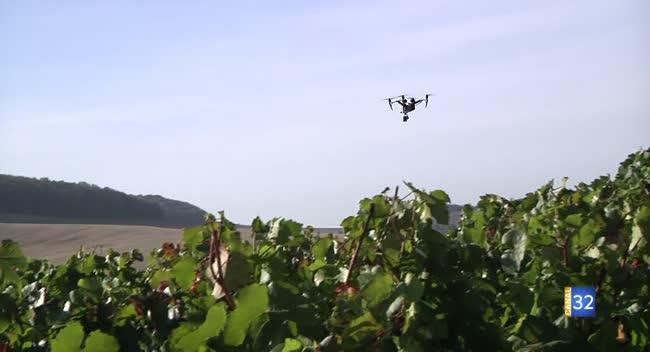Canal 32 - Champagne : les vignes sous l'oeil du drone