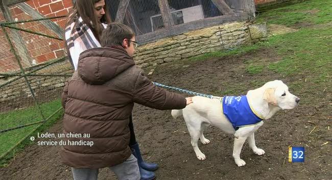 Canal 32 - Loden, un chien aux vertus thérapeutiques