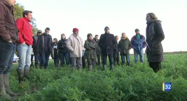 Canal 32 - Quand les fermes s'engagent à réduire l'usage des phytos