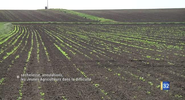 Canal 32 - Sécheresse, annulations... les Jeunes Agriculeurs dans la difficulté