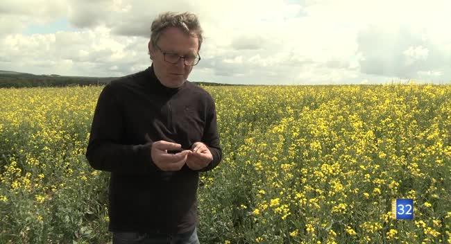 Canal 32 - Terres et Vignes - quand la chambre d'agriculture conseille les agriculteurs