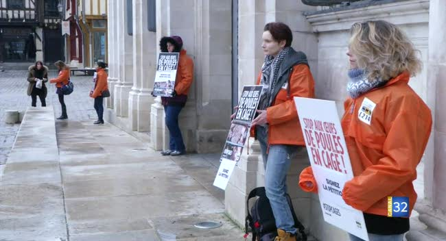Canal 32 - Troyes : l'association L214 mobilisée contre l'élevage des poules en cages