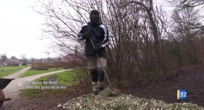Canal 32 - Troyes : les sapins de Noël collectés puis recyclés au parc des Moulins
