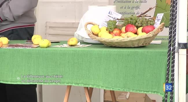 Canal 32 - Un dimanche au verger à La Villeneuve-au-Chêne